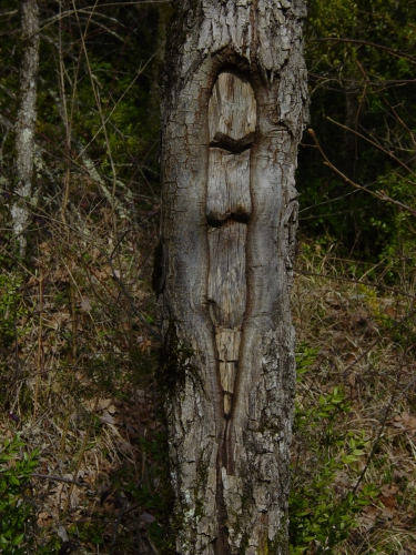 arbres, sculptures, land art